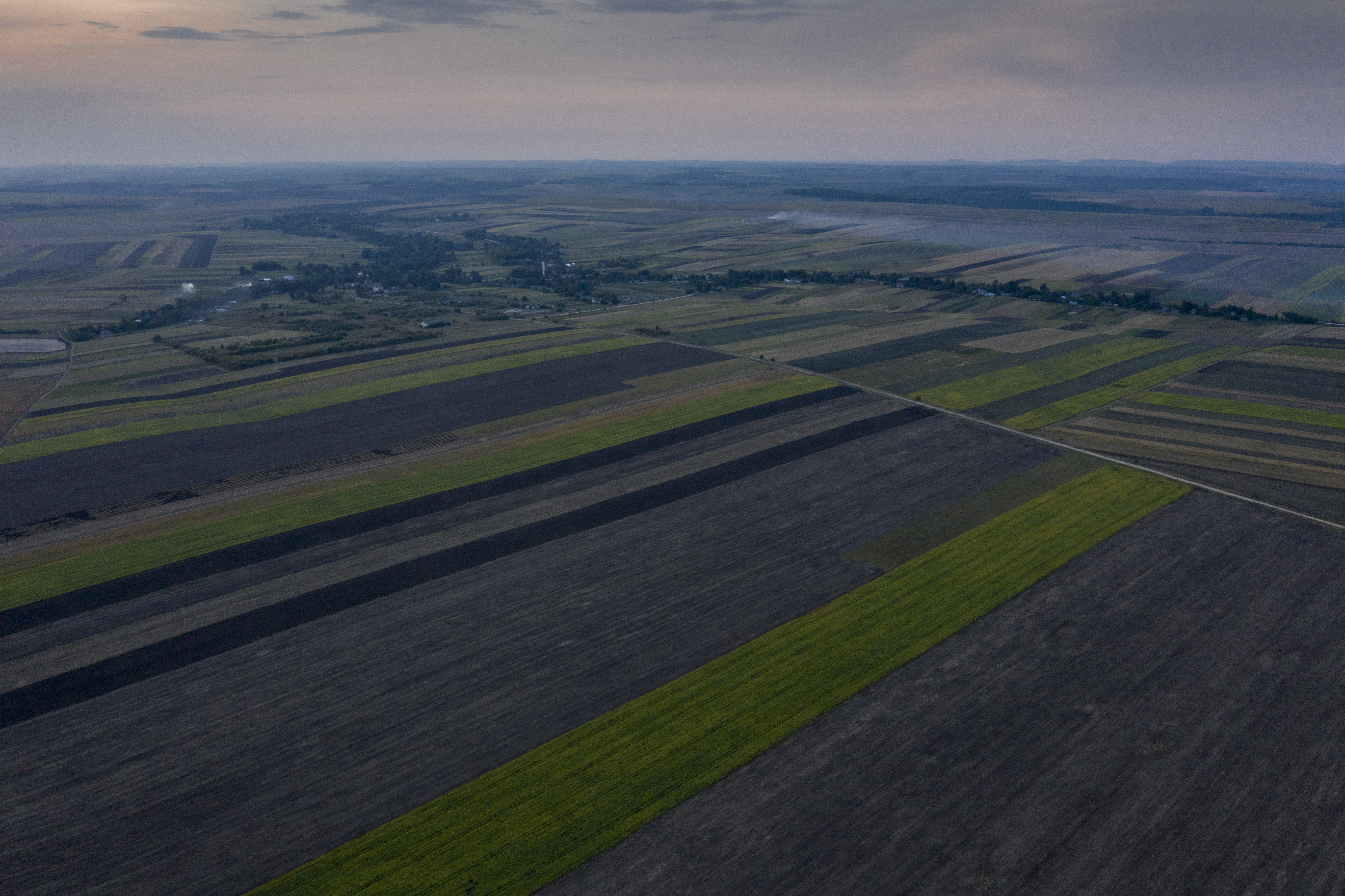 An aerial shot of farmland about 30 km outside Ternopil, Ukraine (AtlasNetwork.org Photo/Bernat Parera).