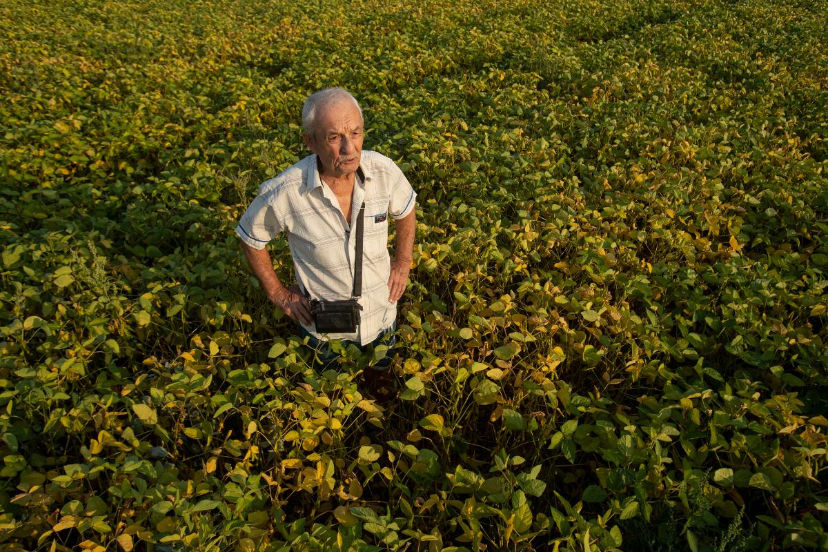 Viktor Tsytsyura stands in a field of soybeans near his plot of land outside Ternopil, Ukraine (AtlasNetwork.org Photo/Bernat Parera).