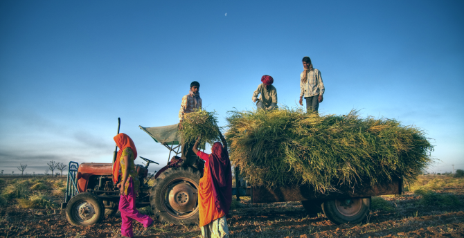 Indian farmers stock