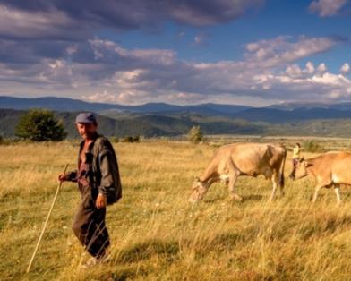 Ukrainian farmer