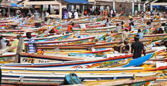 Senegal economic partuciaption