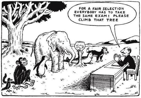 Fair selection cartoon.